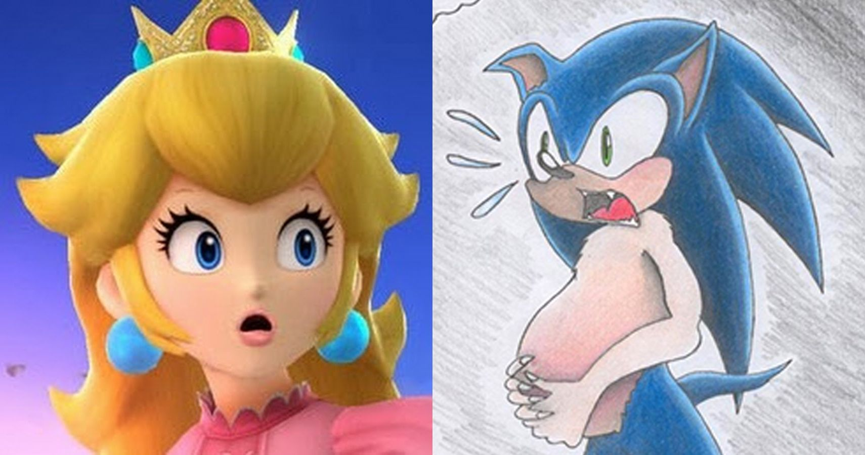 Why Is Sonic Pregnant Deviant Video Game Trends That Won T Go Away