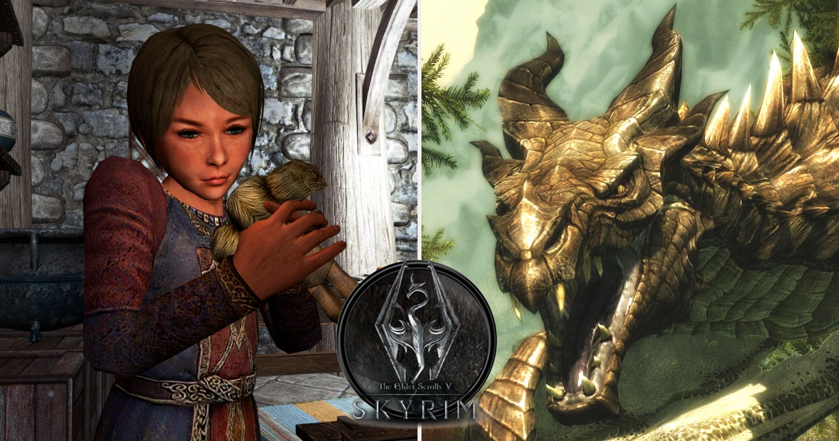 Things Everyone Gets Wrong About Skyrim | TheGamer