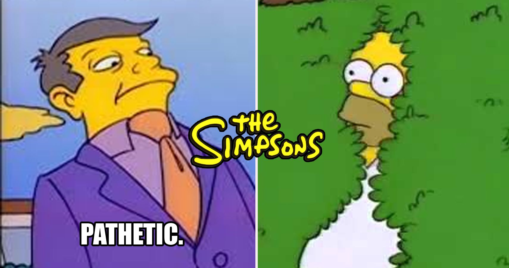 20 Simpsons Memes That Are Too Hilarious For Words Thegamer