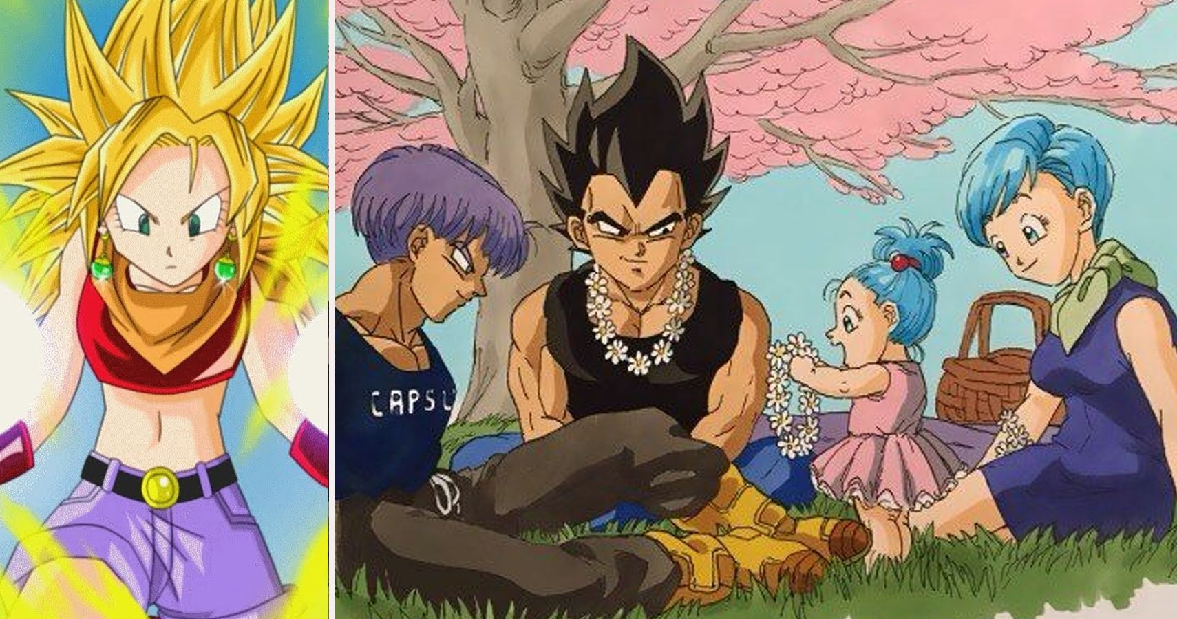 22 Awesome Facts About Bulla From Dragon Ball Thegamer