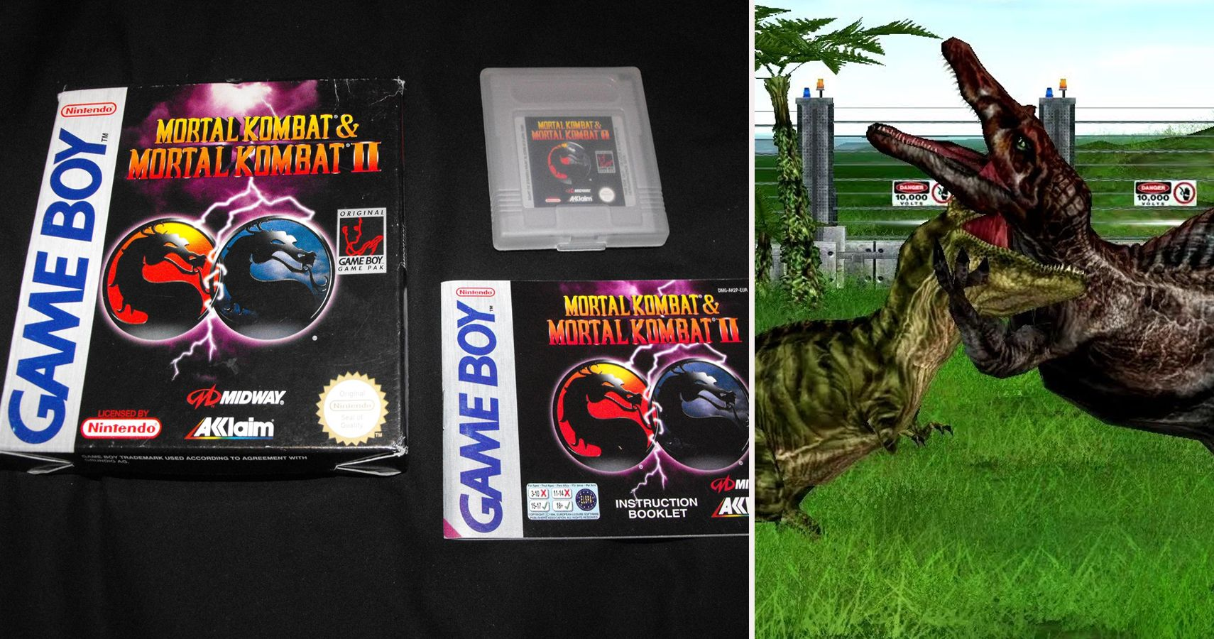 The 30 Rarest Video Games Ever (And How Much They're Worth)