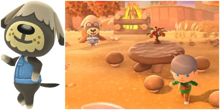 The Cutest Dogs In Animal Crossing New Horizons Ranked
