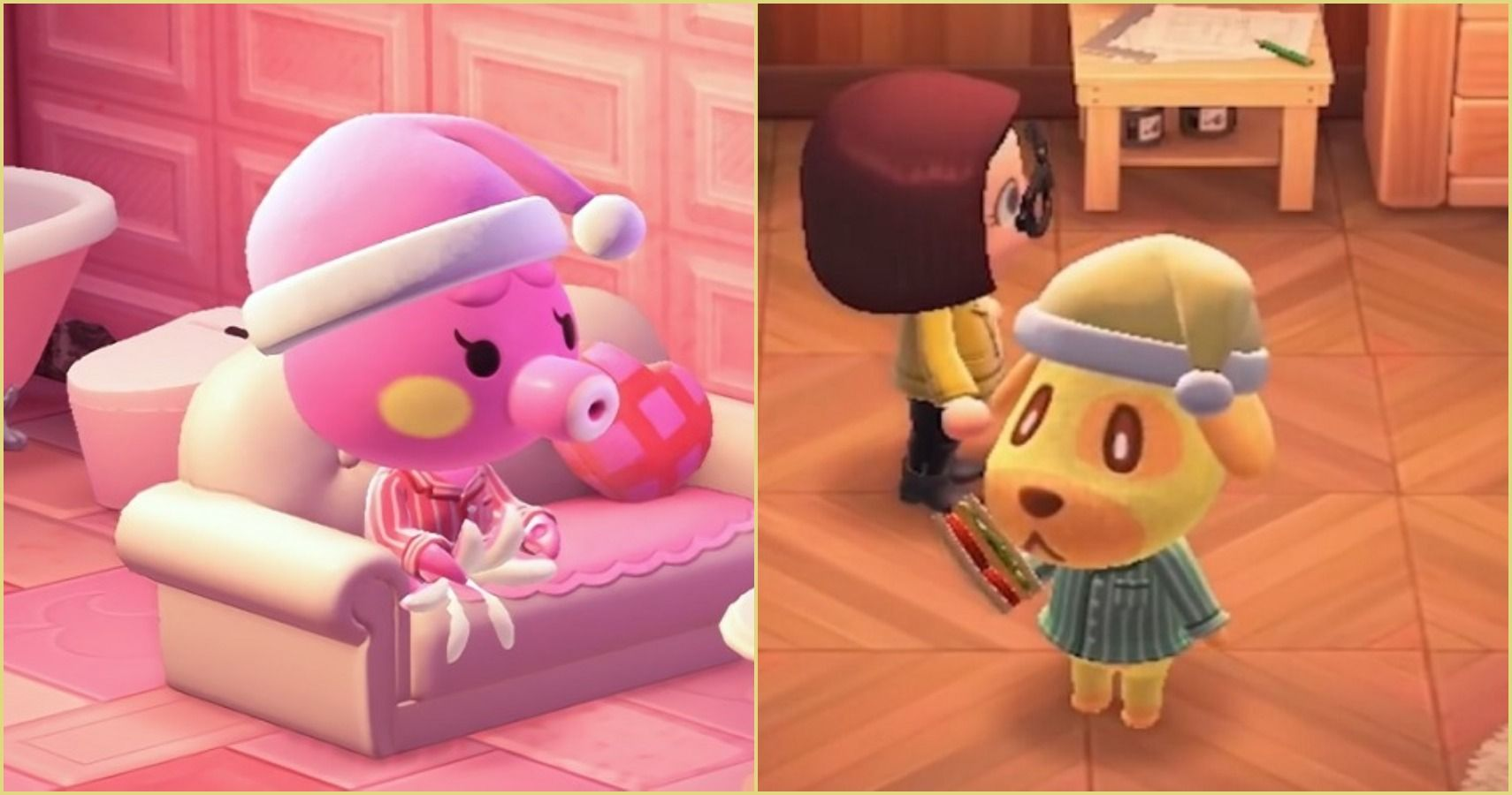Animal Crossing New Horizons 10 Rarest Normal Villagers Ranked